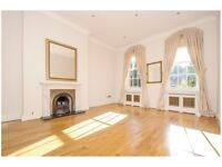 Stunning 2 bedroom mansion apartment