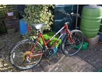 2 bikes £15.00 each or £25 the pair