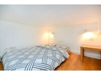 Central London, Pimlico - Modern Split Level Studio Flat