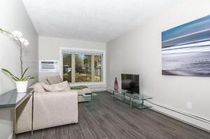 3 Bedroom + 2bath! Fully Renovated w/ 1 month free!