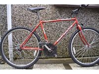 Perfect working Mountain Bike / Cycle for sale