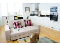 Modern 2bed/2bath apartment*Old St. area* 3 months min*Fuly furnished