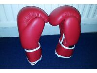 Boxing Gloves MMA Punch Bag Training Mitts 14oz
