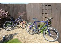 Men's & Woman's Raleigh Bikes for sale