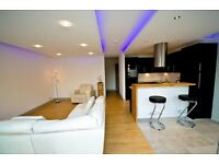 Spacious Modern 1-Bed Flat for rent in the centre of Nailsea