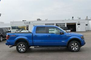 2014 Ford F-150 FX4 London Ontario image 5