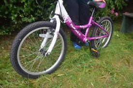 Beautiful Dawes Venus 20-Inch Girls Bike (white/purple)