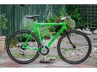 Viking custom hybrid bike