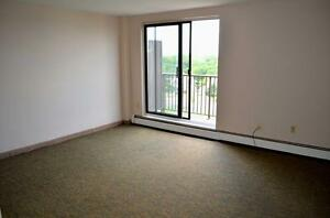 All Inclusive Bachelor Apartment  - Downtown - Dundas Street