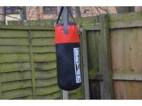 Punch Bag Bryan
