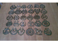 Large Collection of Horse Brass