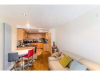 ONE bedroom flat on 7th FLOOR, furnished, BALCONY, porter, AVAILABLE FROM MID JUNE 2017, PARKING