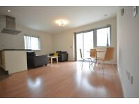 2 Double Bedroom 2 Bathroom Apartment-Newly Painted-Great Access City and Canary Wharf-Wooden Floors