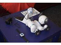 Robot Dog (chip)