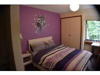 Charming rooms in friendly flatshare!!!!!!