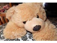 Teddy pyjama case