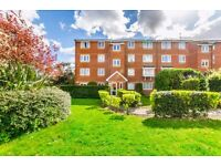 Lovely spacious one bedroom first floor flat in Stratford, E15
