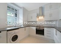 3 Bed flat Walking distance to Pimlico Tube and Nearby Westminster Good size gated Development