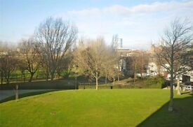 A STUNNING LUXURY ONE BEDROOM FLAT- AMAZING - MODERN FLAT, SW8