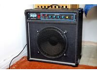 PA/guitar amp and mike