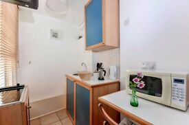 *Central London/Earls Court - Nice Tidy Single Bedsit, Garden