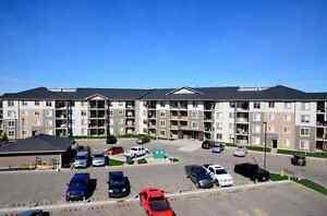 Vita Estates - 18124 78 Street Edmonton Edmonton Area image 2