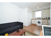 Lovely 4 bed maisonette in Mile End E1 available from 23rd September 2016