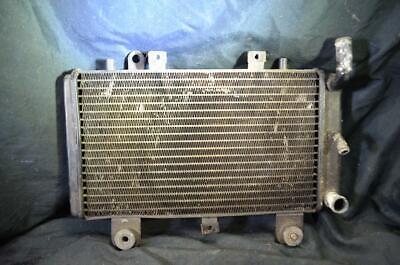 Triumph Tiger Radiator Water Cooler Radiators 1999 855i T709 955i 1999 to 2000