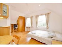 Large Studio Flat in Hampstead