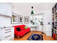 Beautiful Studio in Russell Square, Zone 1