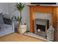 Modern 2 Bed House to rent in Hucknall