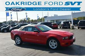 2010 Ford Mustang V6 AUTO CONVERTIBLE
