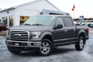 2015 Ford F-150 XTR | REDUCED | CREW | ECOBOOST | 4X4 | BACKUP C
