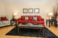 Enjoy the best of Ottawa! Chic-Spacious Bachelor