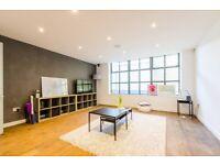 Double room with En suite in luxurious flat