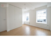 Gorgeous 2 Bed 2 Bath Period Flat in Dalston - Stoke Newington N16