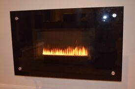 Balanced flue natural gas fire