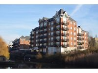 Bright, Airy & Spacious Two Bedroom Apartment with Two Private Balconies