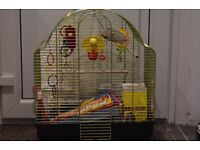 LARGE BIRD CASE with toys, food...