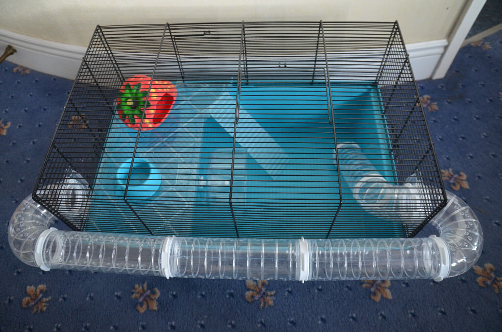 Pets at Home Hamster Large Wire Cage w/ Tube, Strawberry House ...