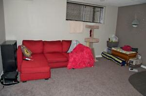 1 Bedroom Basement Suite for Rent