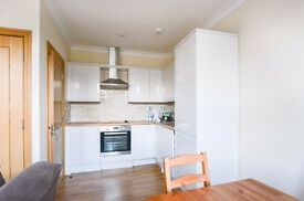 Stunning Modern 1 bed with Small Roof Terrace - Finsbury Park N4
