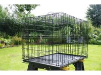 Black wire dog cage