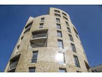 1 bedroom flat in Spring, Camellia Apartments, Stonebridge NW10
