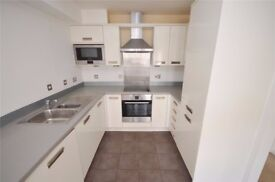 1 bedroom flat to rent in Theale