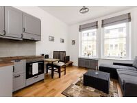 GREAT JUST REFURBISHED STUDIO APARTMENT with open plan kitchen and en-suite shower/WC