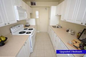 STUDENTS! 3 bedroom Apartment for Rent! INCENTIVES! London Ontario image 3