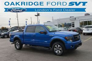 2014 Ford F-150 FX4 London Ontario image 1