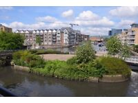 Two Double Bedroom Water View Apartment with Underground Parking - Brentford