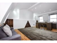 Stunning to Bedroom two bathroom apartment - Upper Street